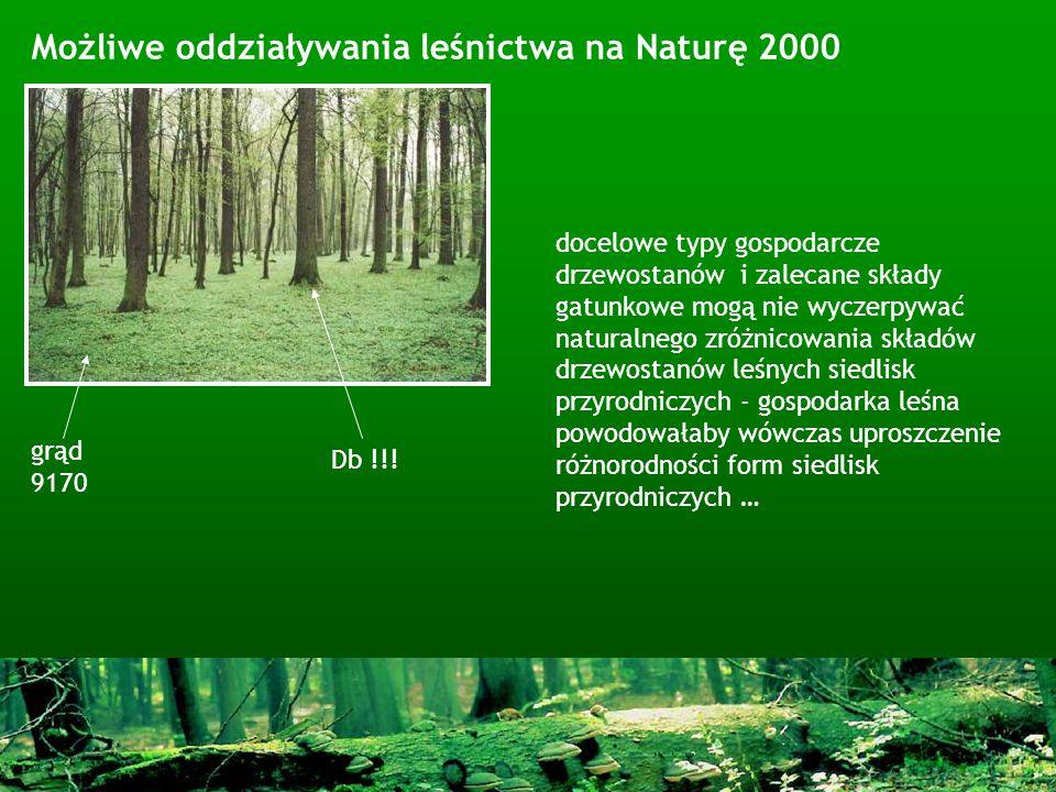 Możliwe oddziaływania leśnictwa na Naturę 2000 docelowe typy gospodarcze drzewostanów i zalecane składy gatunkowe mogą nie wyczerpywać naturalnego zró