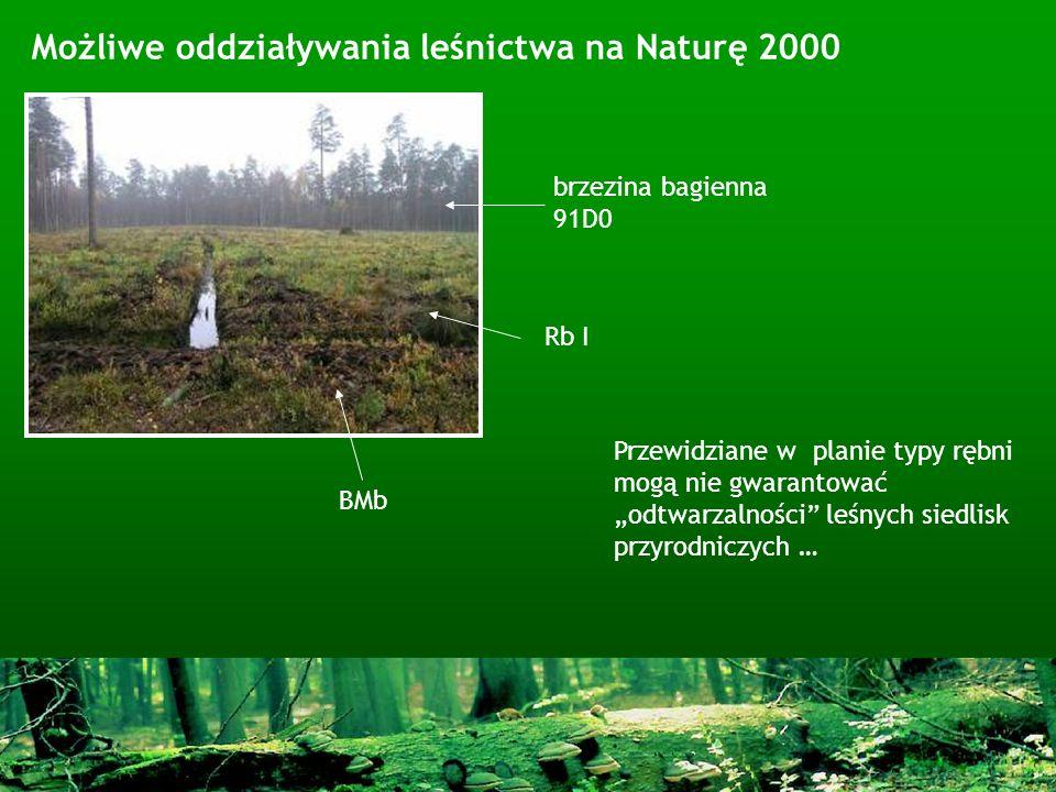 Możliwe oddziaływania leśnictwa na Naturę 2000 Przewidziane w planie typy rębni mogą nie gwarantować odtwarzalności leśnych siedlisk przyrodniczych …