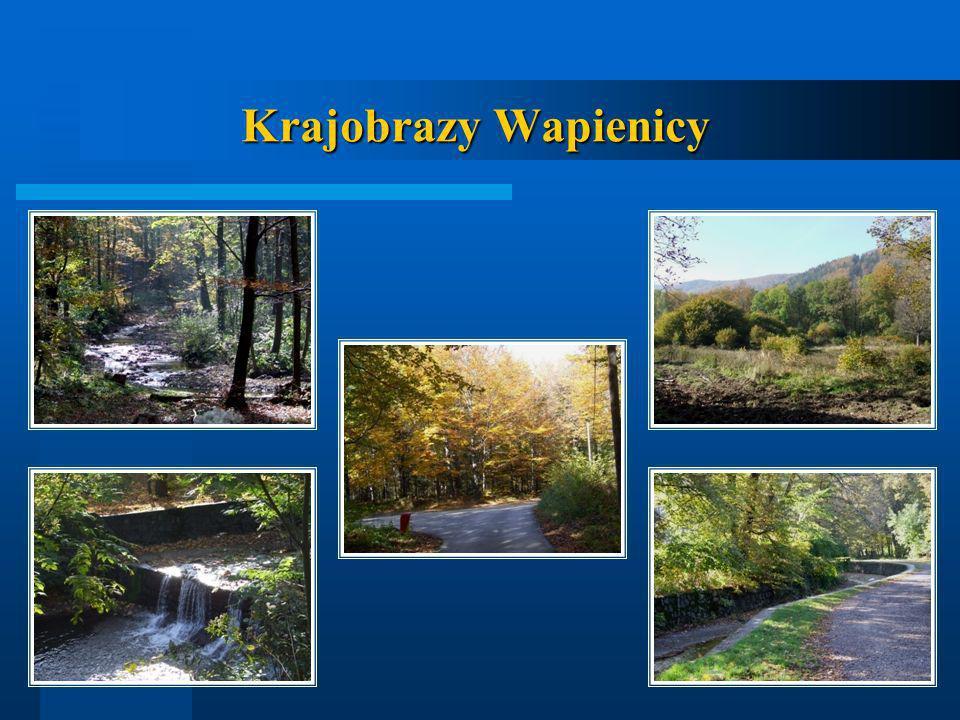 Krajobrazy Wapienicy