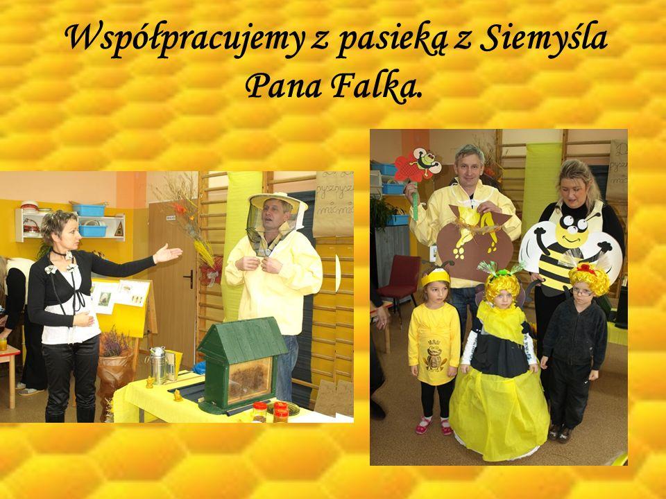 Współpracujemy z pasieką z Siemyśla Pana Falka.