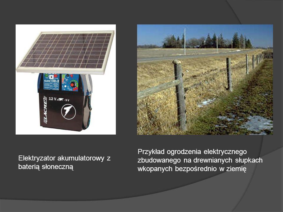 Elektryzator akumulatorowy z baterią słoneczną Przykład ogrodzenia elektrycznego zbudowanego na drewnianych słupkach wkopanych bezpośrednio w ziemię