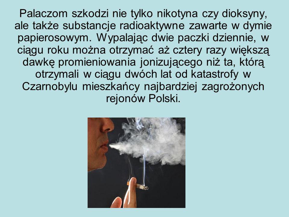 Palaczom szkodzi nie tylko nikotyna czy dioksyny, ale także substancje radioaktywne zawarte w dymie papierosowym. Wypalając dwie paczki dziennie, w ci