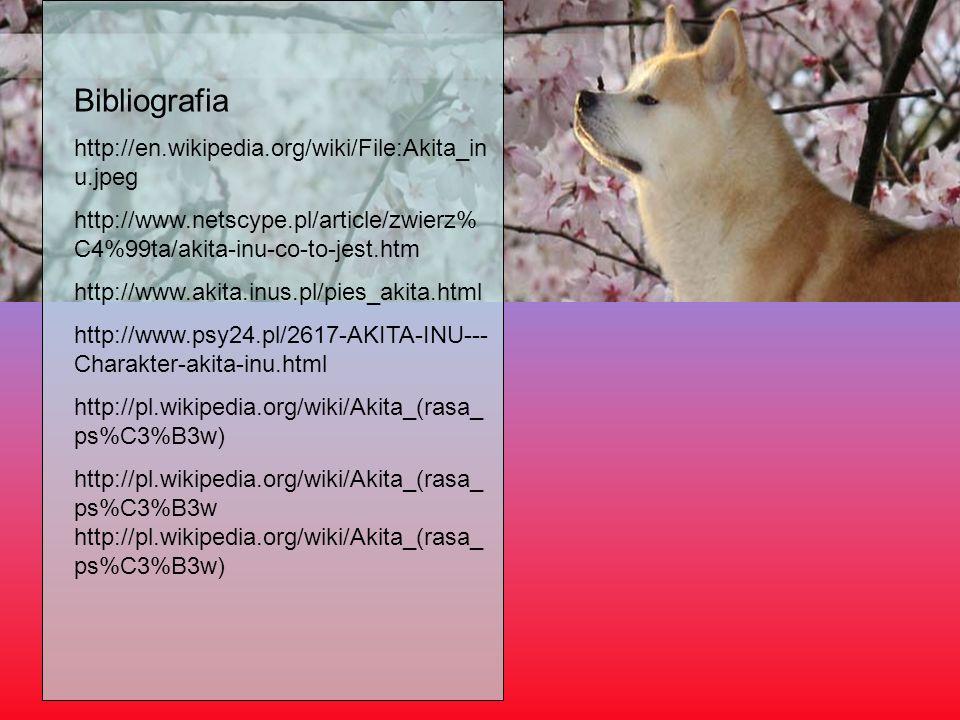 Bibliografia http://en.wikipedia.org/wiki/File:Akita_in u.jpeg http://www.netscype.pl/article/zwierz% C4%99ta/akita-inu-co-to-jest.htm http://www.akit