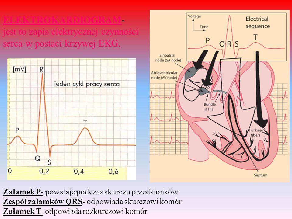 ELEKTROKARDIOGRAM- jest to zapis elektrycznej czynności serca w postaci krzywej EKG. Załamek P- powstaje podczas skurczu przedsionków Zespół załamków