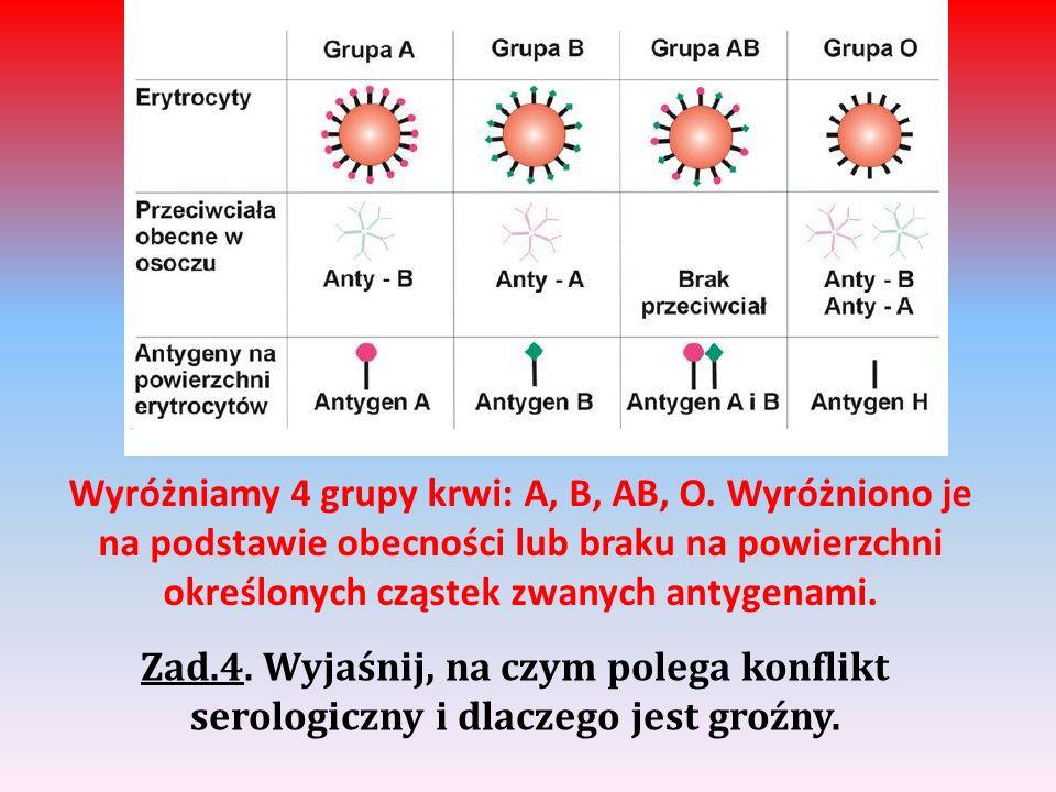 Wyróżniamy 4 grupy krwi: A, B, AB, O. Wyróżniono je na podstawie obecności lub braku na powierzchni określonych cząstek zwanych antygenami. Zad.4. Wyj