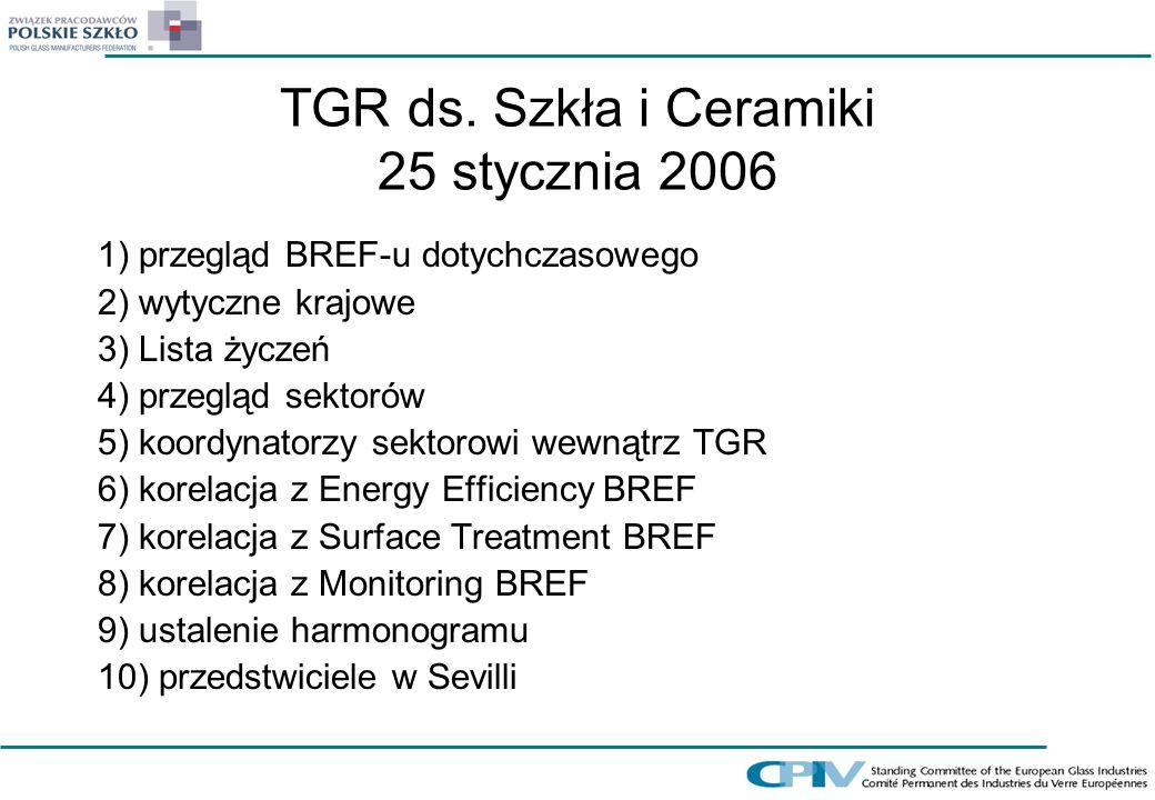 TGR ds. Szkła i Ceramiki 25 stycznia 2006 1) przegląd BREF-u dotychczasowego 2) wytyczne krajowe 3) Lista życzeń 4) przegląd sektorów 5) koordynatorzy