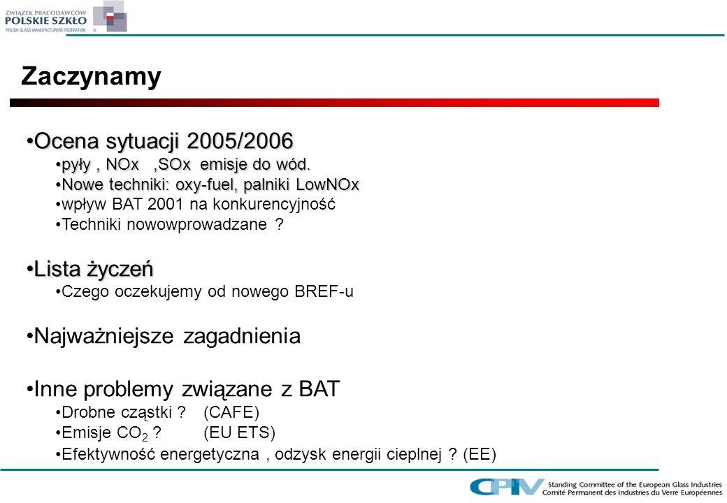 Zaczynamy Ocena sytuacji 2005/2006Ocena sytuacji 2005/2006 pyły, NOx,SOx emisje do wód.pyły, NOx,SOx emisje do wód. Nowe techniki: oxy-fuel, palniki L