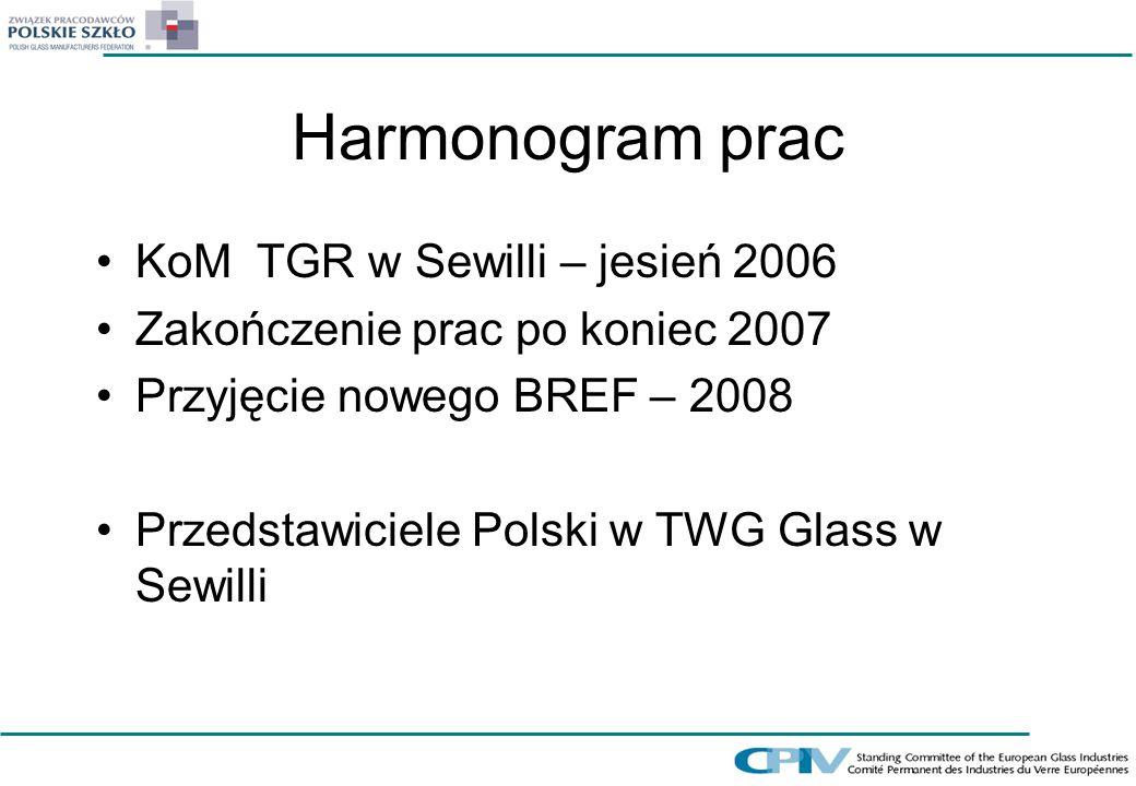 Harmonogram prac KoM TGR w Sewilli – jesień 2006 Zakończenie prac po koniec 2007 Przyjęcie nowego BREF – 2008 Przedstawiciele Polski w TWG Glass w Sew