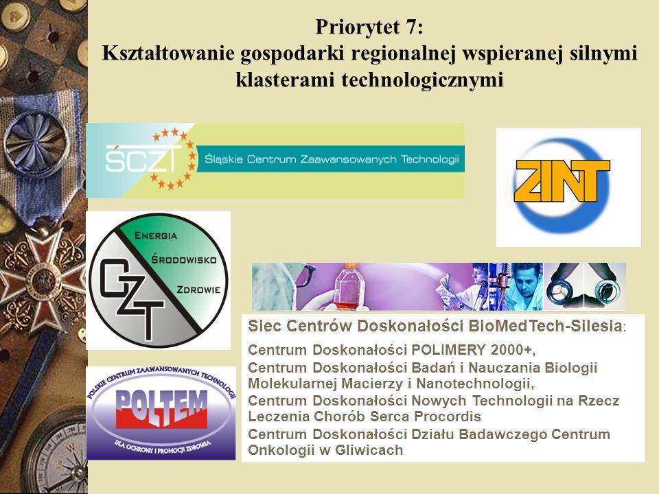 Priorytet 7: Kształtowanie gospodarki regionalnej wspieranej silnymi klasterami technologicznymi Siec Centrów Doskonałości BioMedTech-Silesia : Centru
