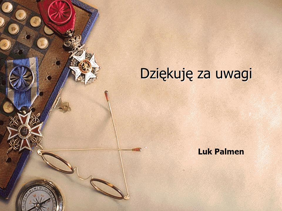 Dziękuję za uwagi Luk Palmen