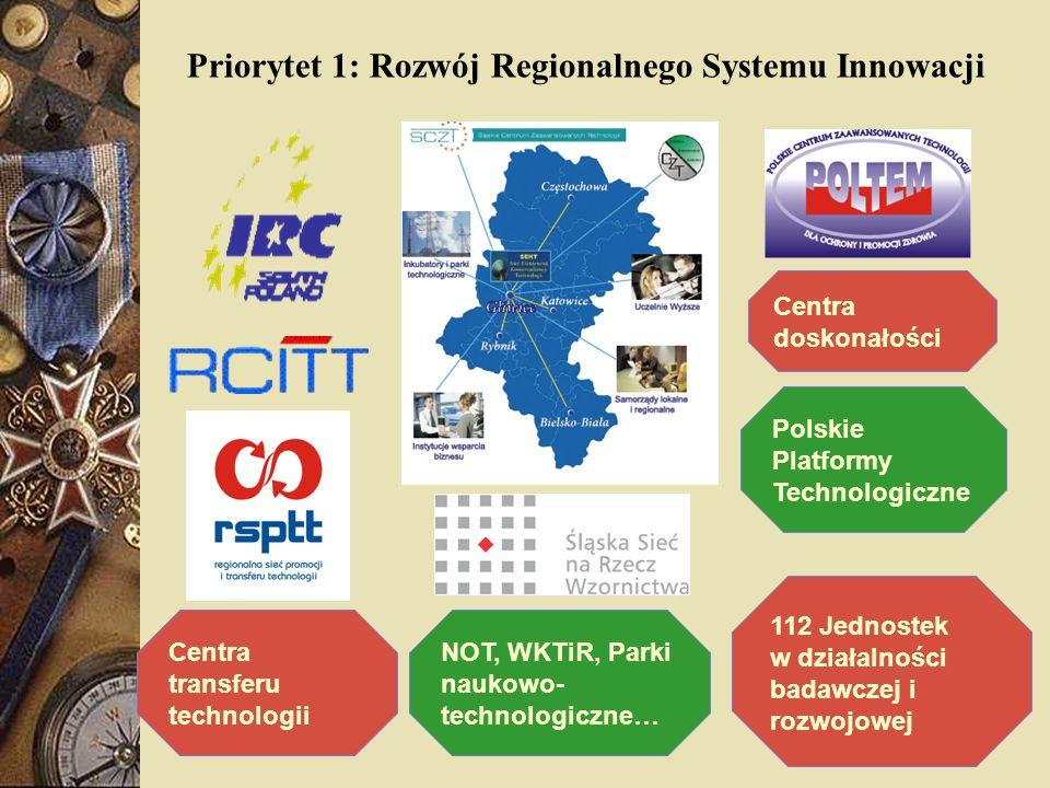 Centra doskonałości Polskie Platformy Technologiczne 112 Jednostek w działalności badawczej i rozwojowej Centra transferu technologii NOT, WKTiR, Park