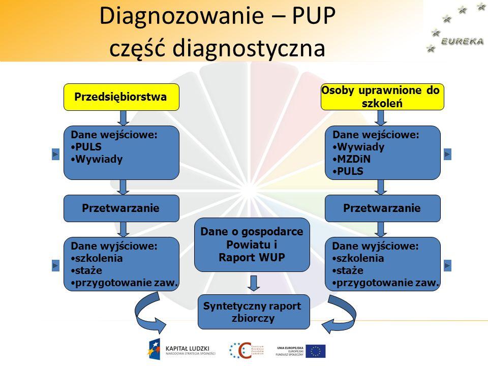 Diagnozowanie – PUP część diagnostyczna Dane wejściowe: PULS Wywiady Przetwarzanie Dane wyjściowe: szkolenia staże przygotowanie zaw. Dane wejściowe: