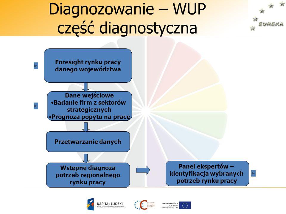 Diagnozowanie – WUP część diagnostyczna Dane wejściowe Badanie firm z sektorów strategicznych Prognoza popytu na pracę Przetwarzanie danych Wstępne di