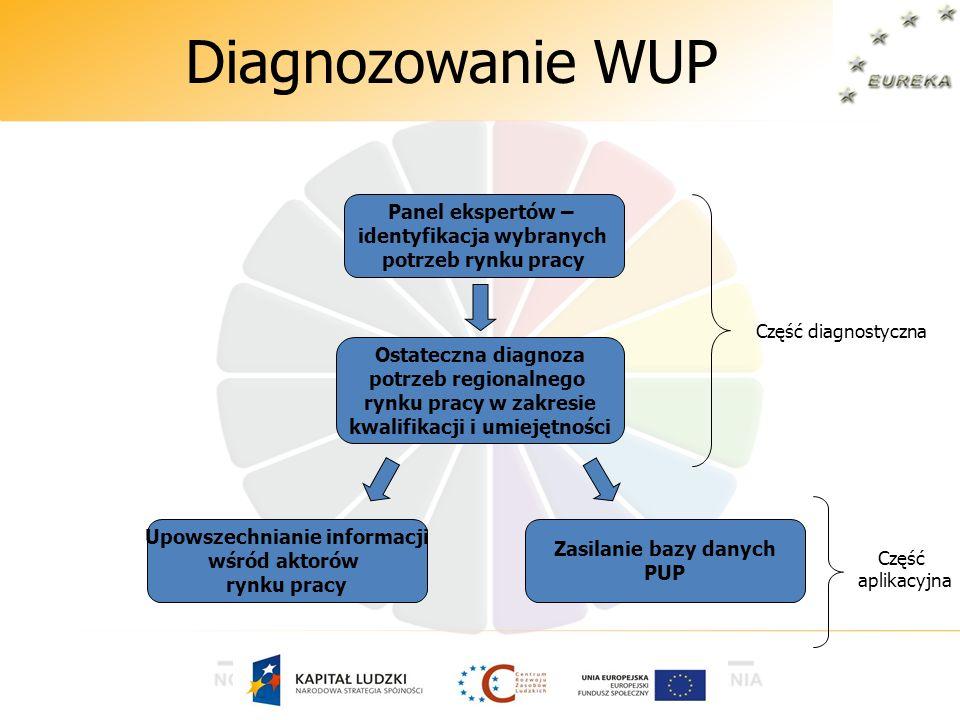 Diagnozowanie WUP Ostateczna diagnoza potrzeb regionalnego rynku pracy w zakresie kwalifikacji i umiejętności Zasilanie bazy danych PUP Upowszechniani