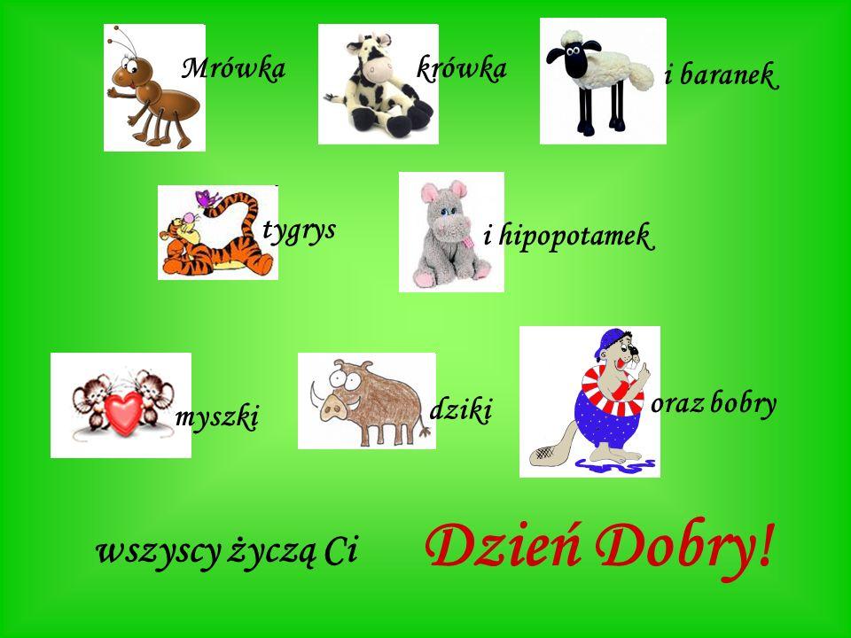 Mrówkakrówka i baranek tygrys i hipopotamek myszki dziki oraz bobry wszyscy życzą Ci Dzień Dobry!