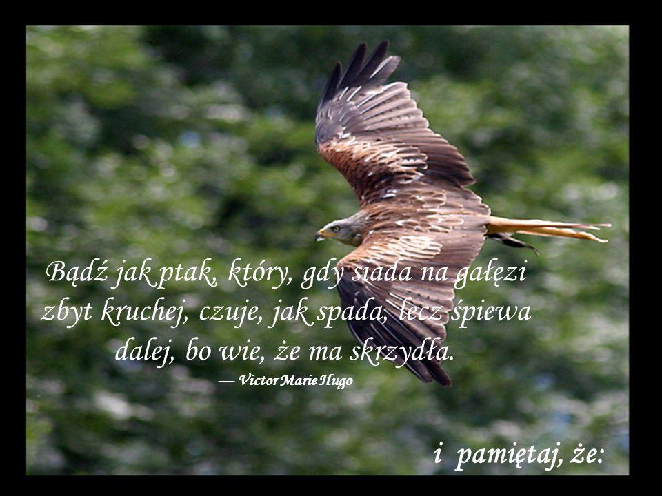 Bądź jak ptak, który, gdy siada na gałęzi zbyt kruchej, czuje, jak spada, lecz śpiewa dalej, bo wie, że ma skrzydła. Victor Marie Hugo i pamiętaj, że: