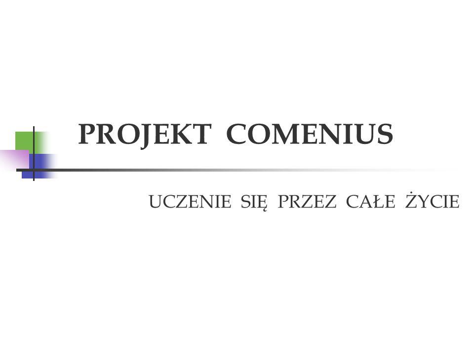 ZSZ w Górze (Polska) http://www.zszgoras.pol.pl Liceum Ogólnokształcące im.