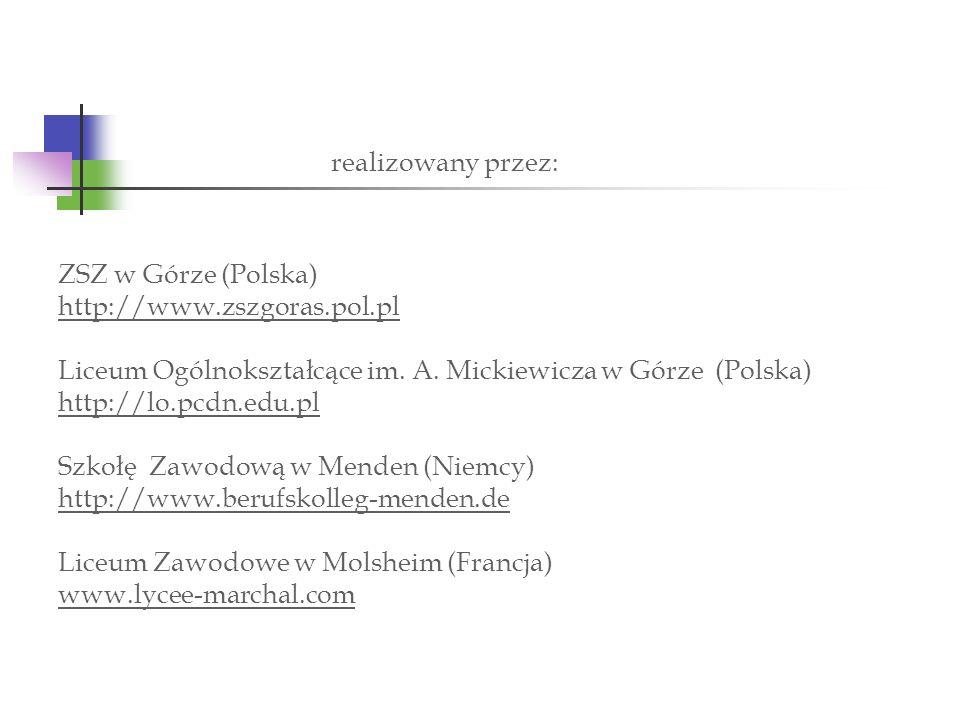 ZSZ w Górze (Polska) http://www.zszgoras.pol.pl Liceum Ogólnokształcące im. A. Mickiewicza w Górze (Polska) http://lo.pcdn.edu.pl Szkołę Zawodową w Me