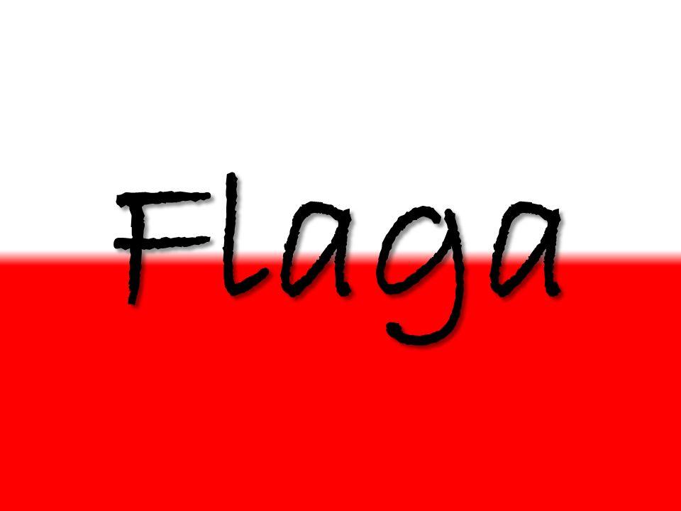 Flaga- płat tkaniny określonego kształtu i barwy przymocowywany do drzewca może zawierać godła, symbole, wizerunki.