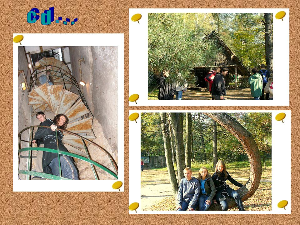 dzień I W Bałtowie mieści się Park Jurajski. Jest to znana okoliczna atrakcja turystyczna.