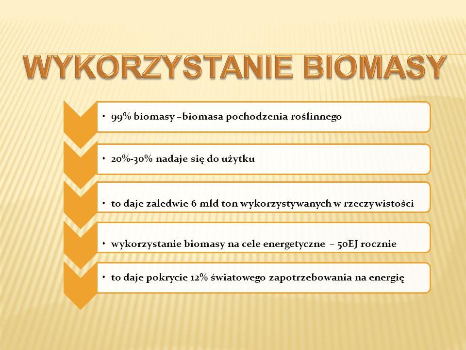 99% biomasy –biomasa pochodzenia roślinnego20%-30% nadaje się do użytku to daje zaledwie 6 mld ton wykorzystywanych w rzeczywistościwykorzystanie biom