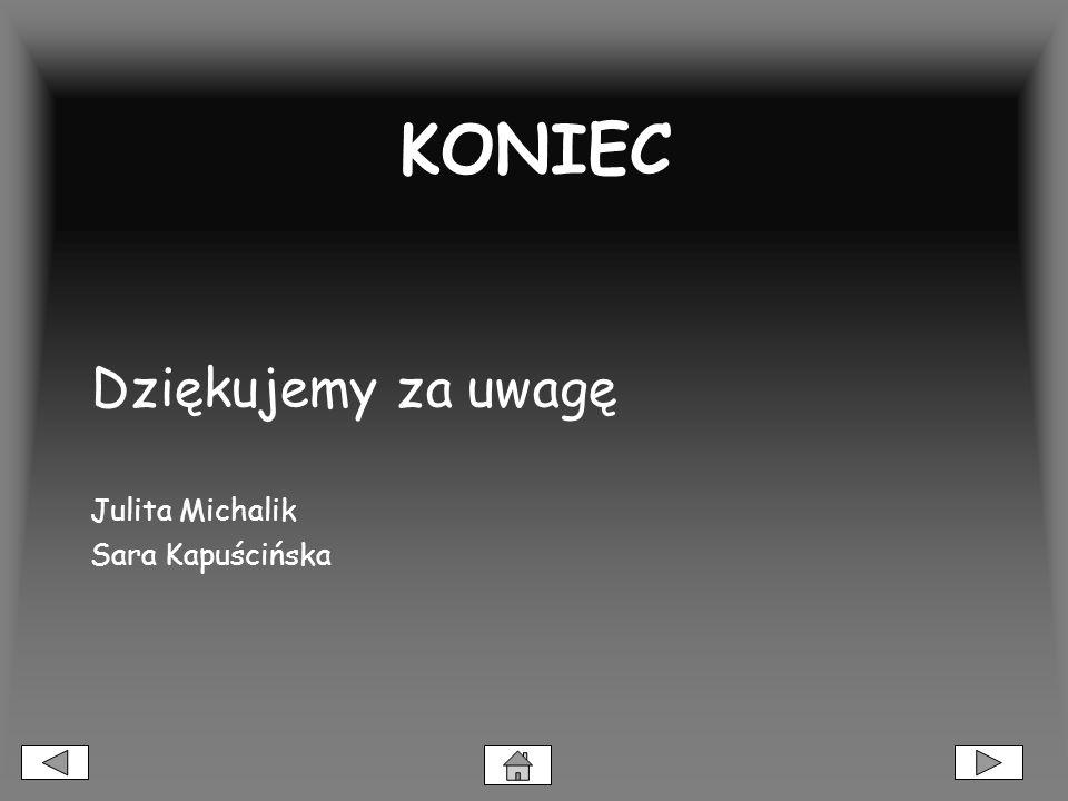 KONIEC Dziękujemy za uwagę Julita Michalik Sara Kapuścińska