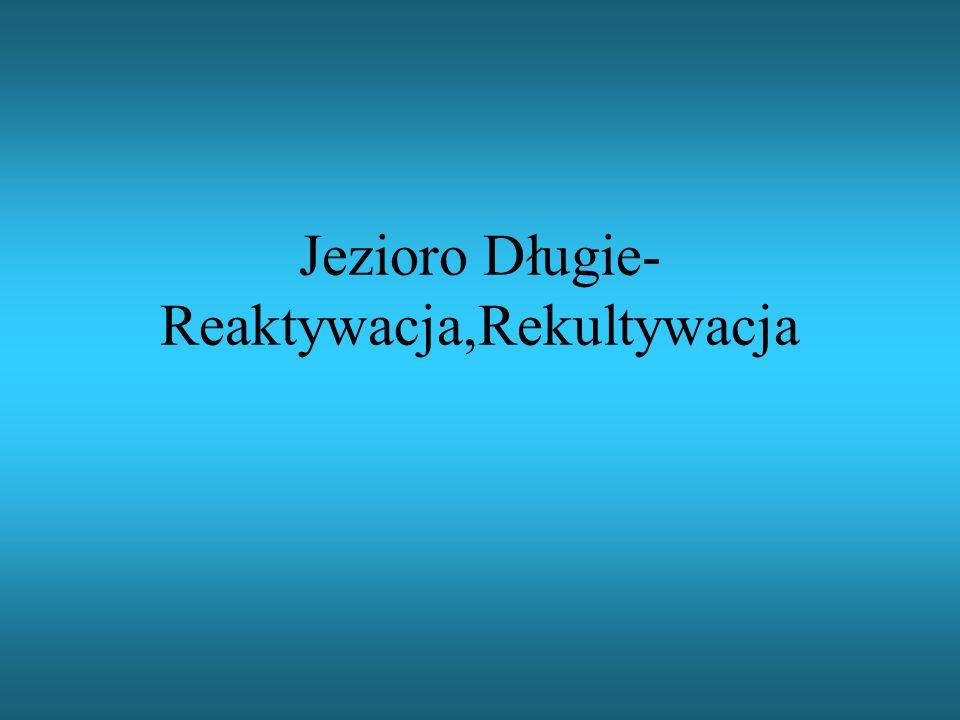 KONIEC Autorzy:Tomasz Zaborowski,Zuzanna Ziółkowska(LO6 Olsztyn ul.