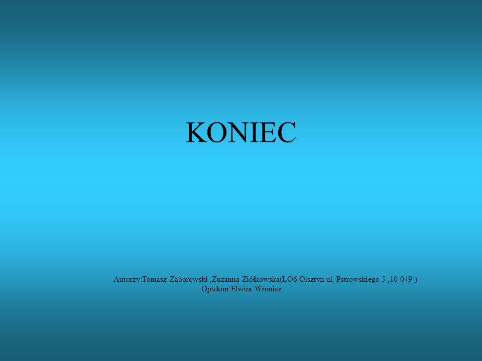 KONIEC Autorzy:Tomasz Zaborowski,Zuzanna Ziółkowska(LO6 Olsztyn ul. Pstrowskiego 5,10-049 ) Opiekun:Elwira Wronisz