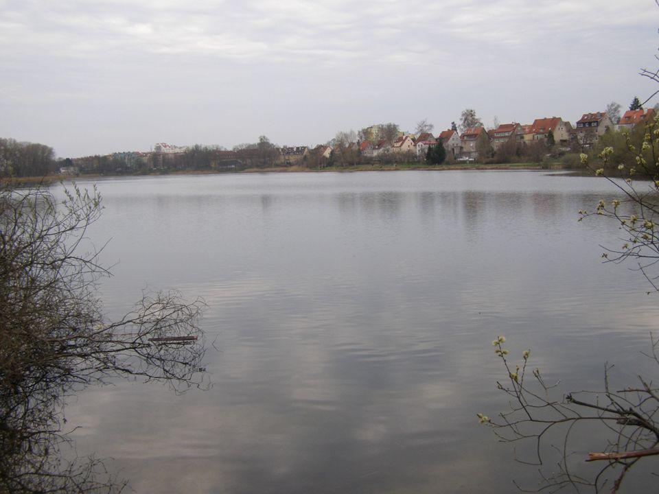 Woda jest jednym z podstawowych związków chemicznych występujących na ziemi.