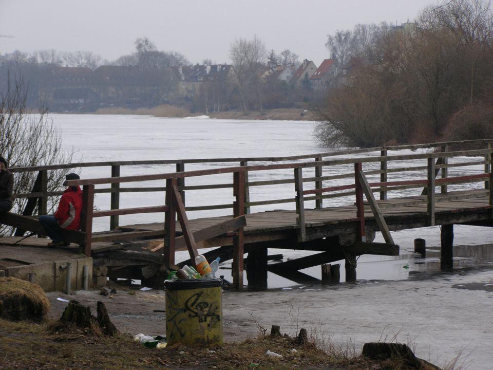 Wody zbiornika zamieszkiwane, są przez rożnego rodzaju zwierzęta i rośliny, zanieczyszczenie ich powoduje obumieranie całego ekosystemu i może doprowadzić do klęski ekologicznej.