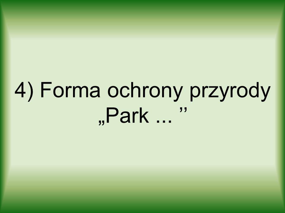 4) Forma ochrony przyrody Park...