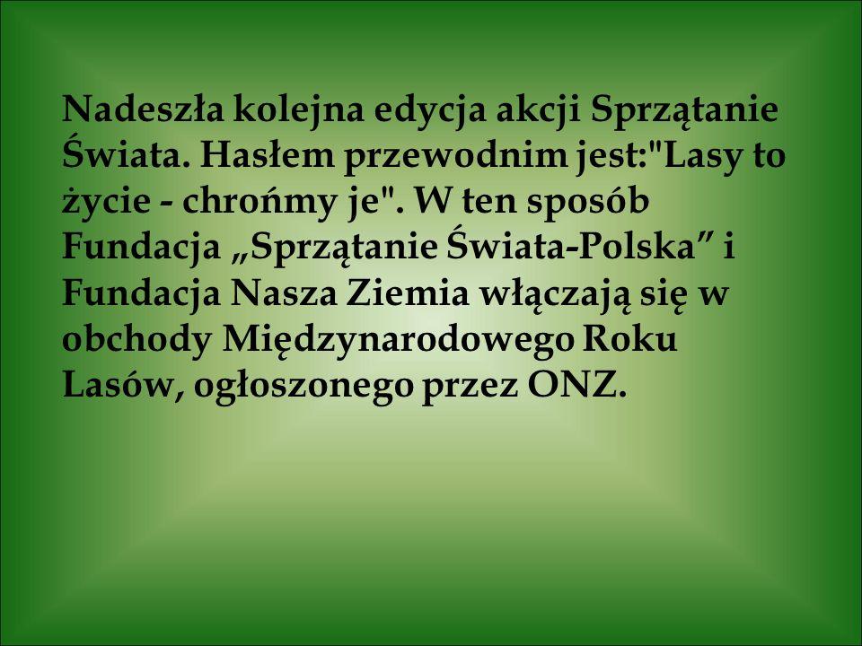 11) Najpiękniejsza puszcza w Polsce
