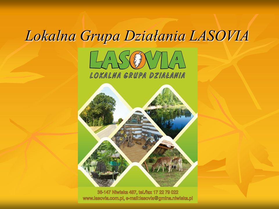 Biura Lokalnej Grupy Działania LASOVIA Biuro Główne Niwiska, 36-147 Niwiska 487 Tel.