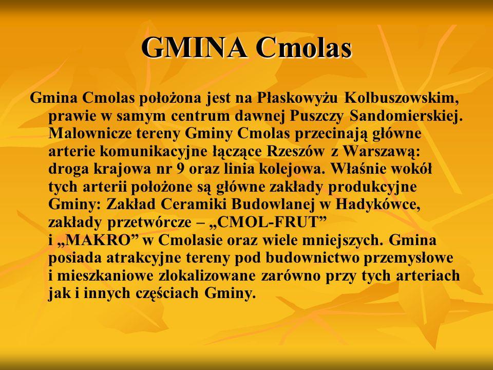 GMINA Cmolas Gmina Cmolas położona jest na Płaskowyżu Kolbuszowskim, prawie w samym centrum dawnej Puszczy Sandomierskiej. Malownicze tereny Gminy Cmo
