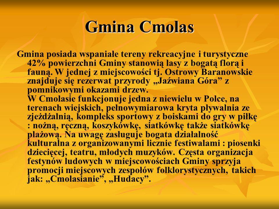 Gmina Cmolas Gmina posiada wspaniałe tereny rekreacyjne i turystyczne 42% powierzchni Gminy stanowią lasy z bogatą florą i fauną. W jednej z miejscowo