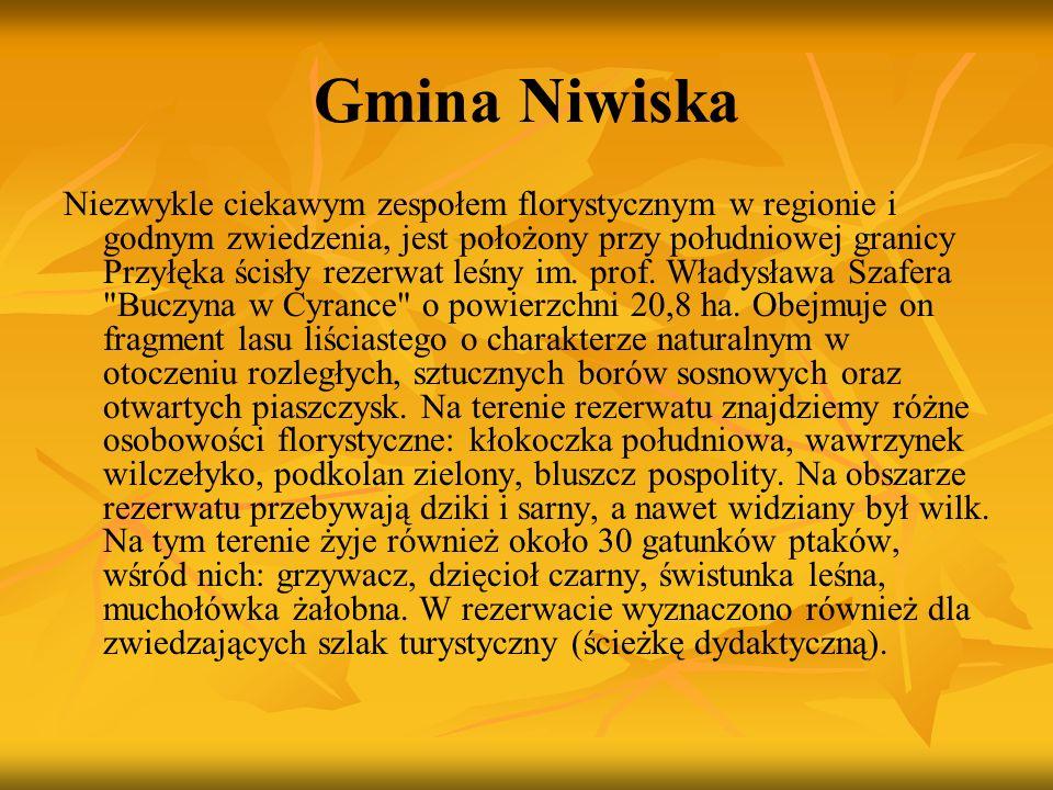 Gmina Niwiska Niezwykle ciekawym zespołem florystycznym w regionie i godnym zwiedzenia, jest położony przy południowej granicy Przyłęka ścisły rezerwa