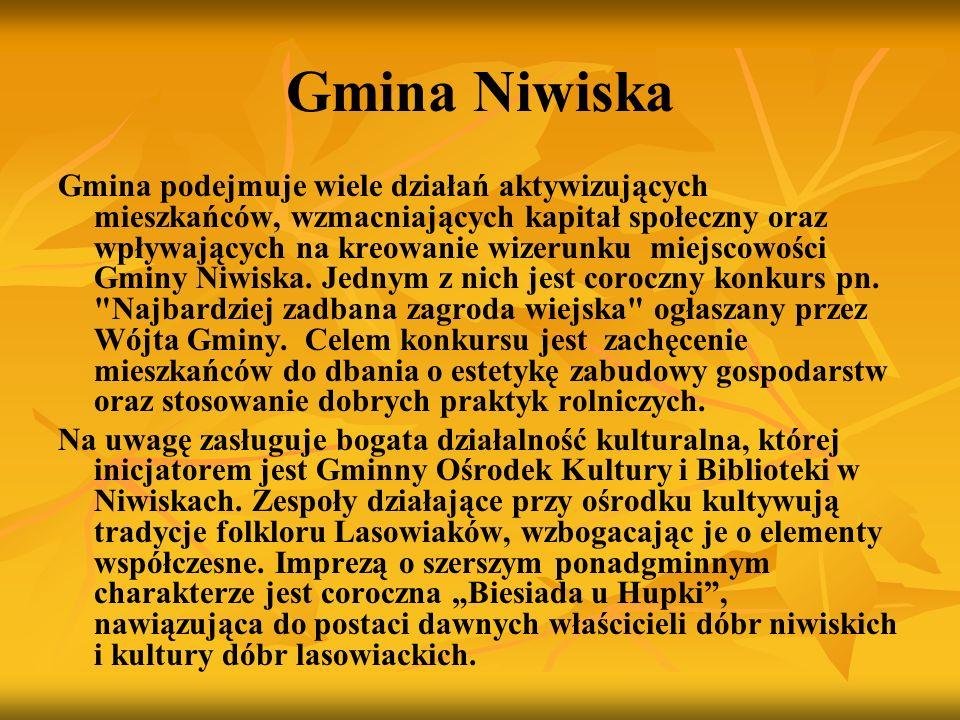 Gmina Niwiska Gmina podejmuje wiele działań aktywizujących mieszkańców, wzmacniających kapitał społeczny oraz wpływających na kreowanie wizerunku miej