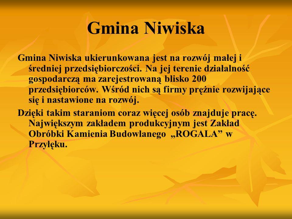 Gmina Niwiska Gmina Niwiska ukierunkowana jest na rozwój małej i średniej przedsiębiorczości. Na jej terenie działalność gospodarczą ma zarejestrowaną