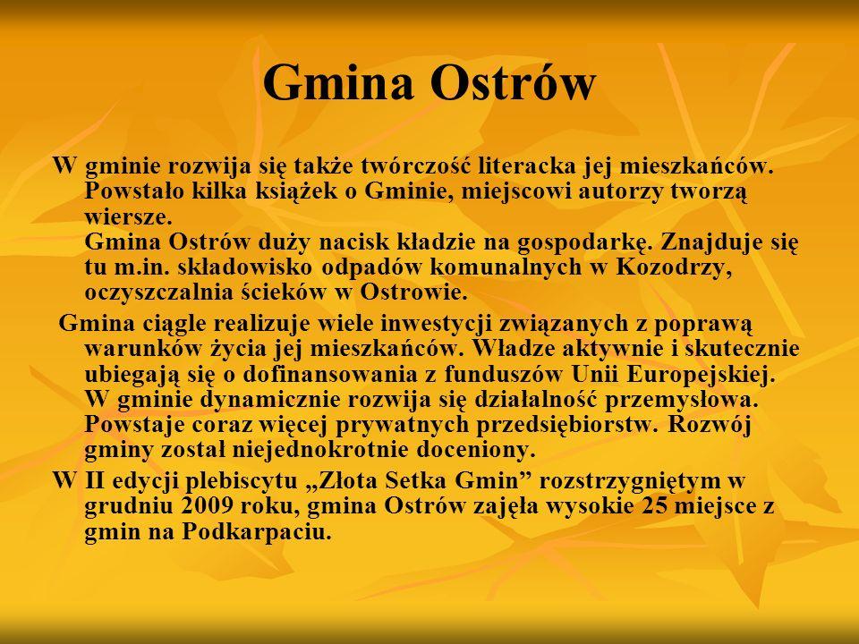 Gmina Ostrów W gminie rozwija się także twórczość literacka jej mieszkańców. Powstało kilka książek o Gminie, miejscowi autorzy tworzą wiersze. Gmina