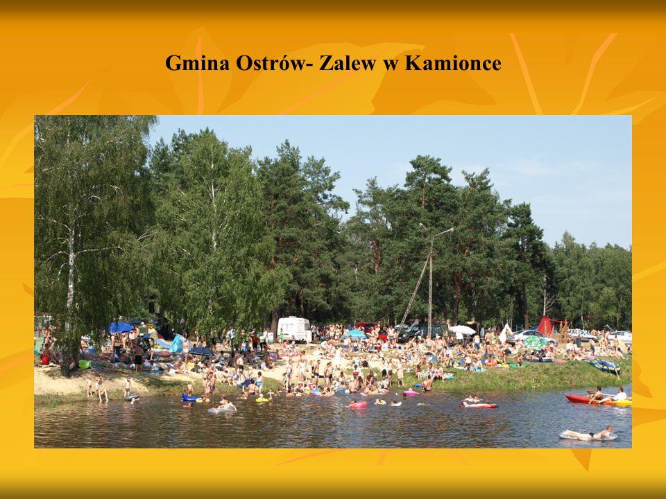Gmina Ostrów- Zalew w Kamionce