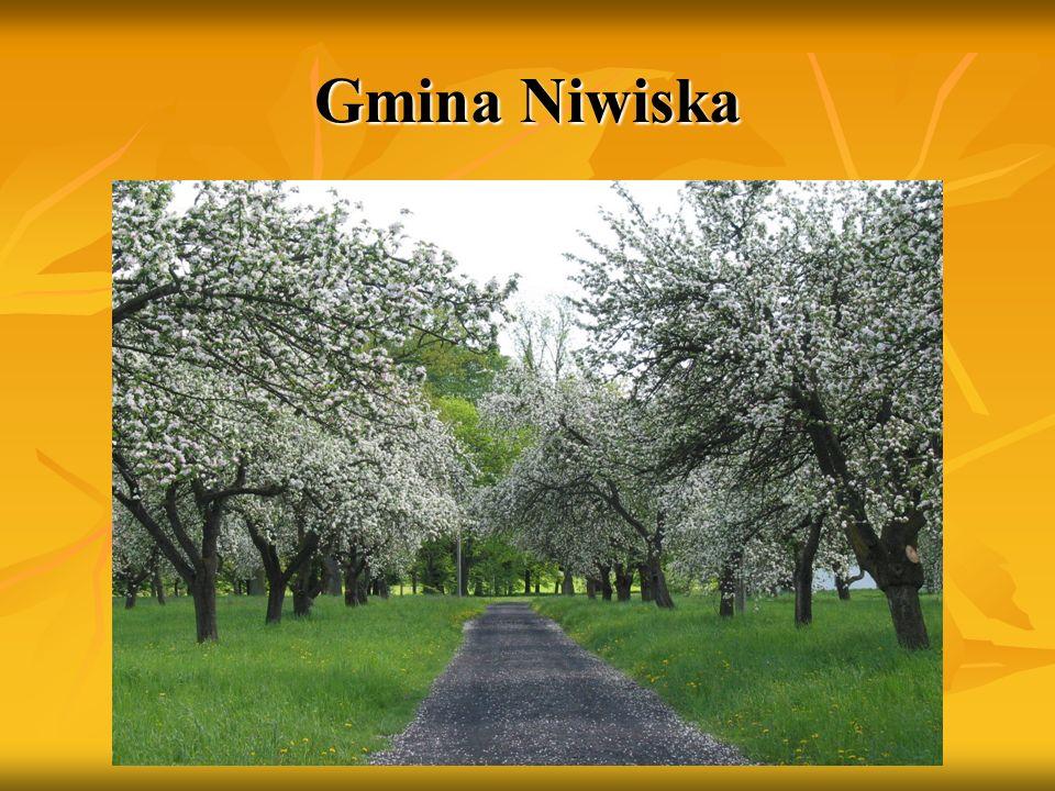 Gmina Cmolas Gmina Cmolas posiada przebogatą historię a jej świadkami są cenne zabytki architektury sakralnej z XVI i XVII w.