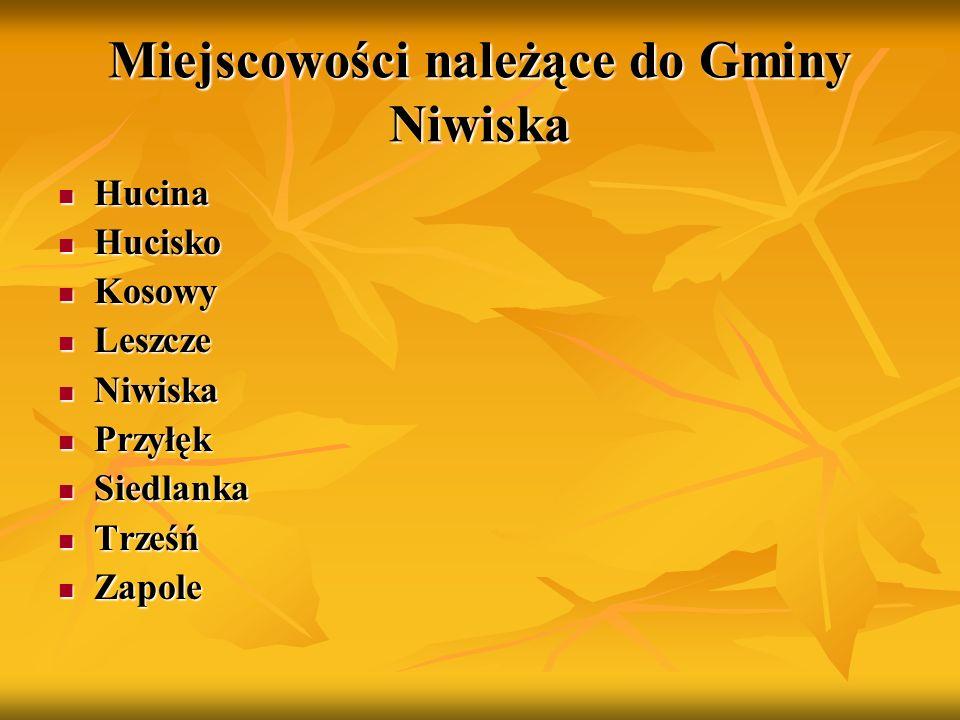 Gmina Ostrów Na szczególną uwagę zasługują tutaj kaplica poświęcona ks.