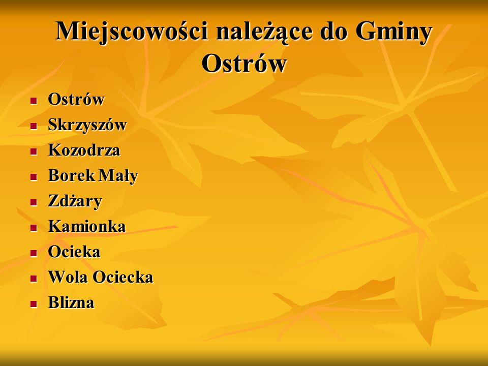 Gmina Ostrów W gminie rozwija się także twórczość literacka jej mieszkańców.