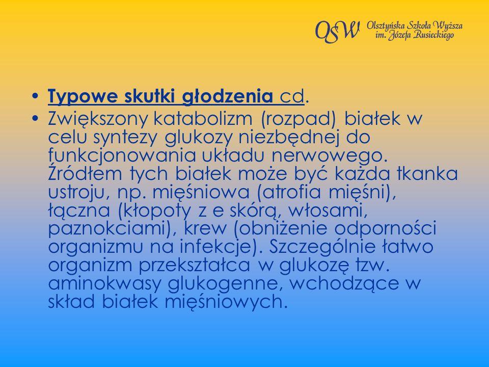 Typowe skutki głodzenia cd. Zwiększony katabolizm (rozpad) białek w celu syntezy glukozy niezbędnej do funkcjonowania układu nerwowego. Źródłem tych b