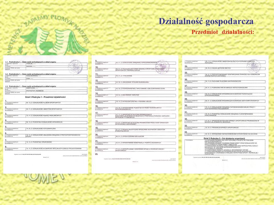 Działalność gospodarcza cd. Zakres działalności: wydruki - banery, flagi