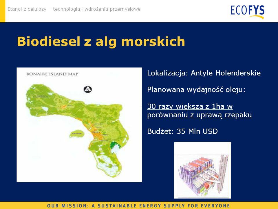 Etanol z celulozy - technologia i wdrożenia przemysłowe Biodiesel z alg morskich Lokalizacja: Antyle Holenderskie Planowana wydajność oleju: 30 razy w