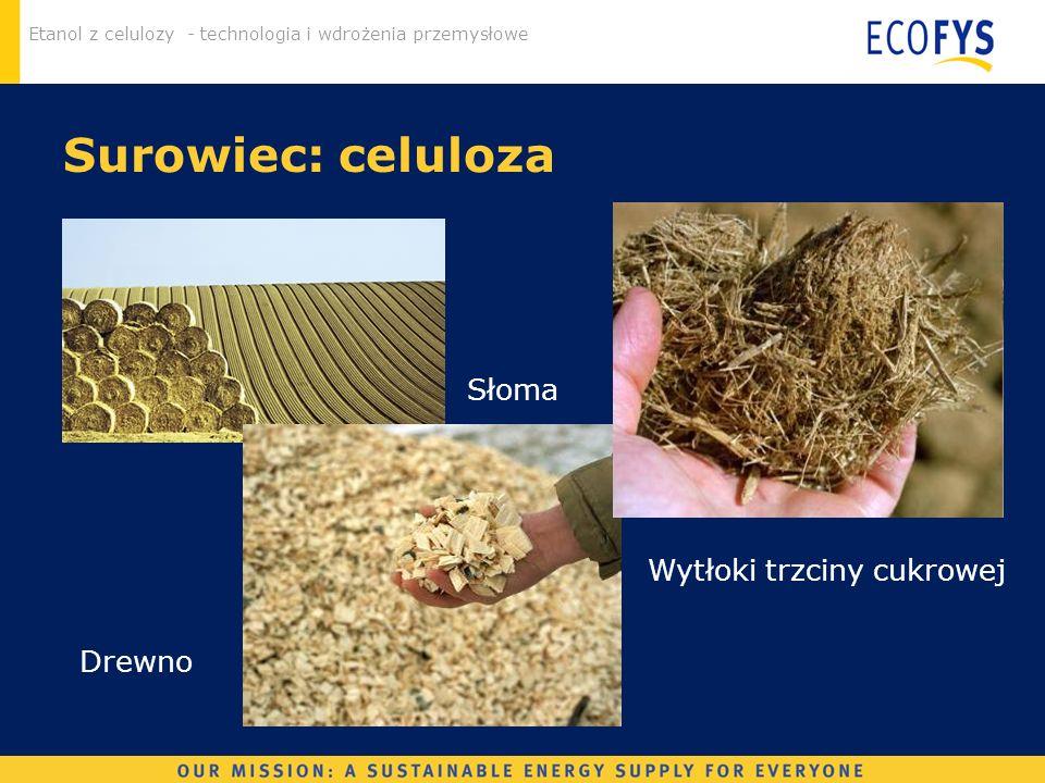 Etanol z celulozy - technologia i wdrożenia przemysłowe Surowiec: celuloza Słoma Drewno Wytłoki trzciny cukrowej