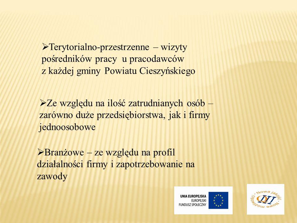 Terytorialno-przestrzenne – wizyty pośredników pracy u pracodawców z każdej gminy Powiatu Cieszyńskiego Branżowe – ze względu na profil działalności f