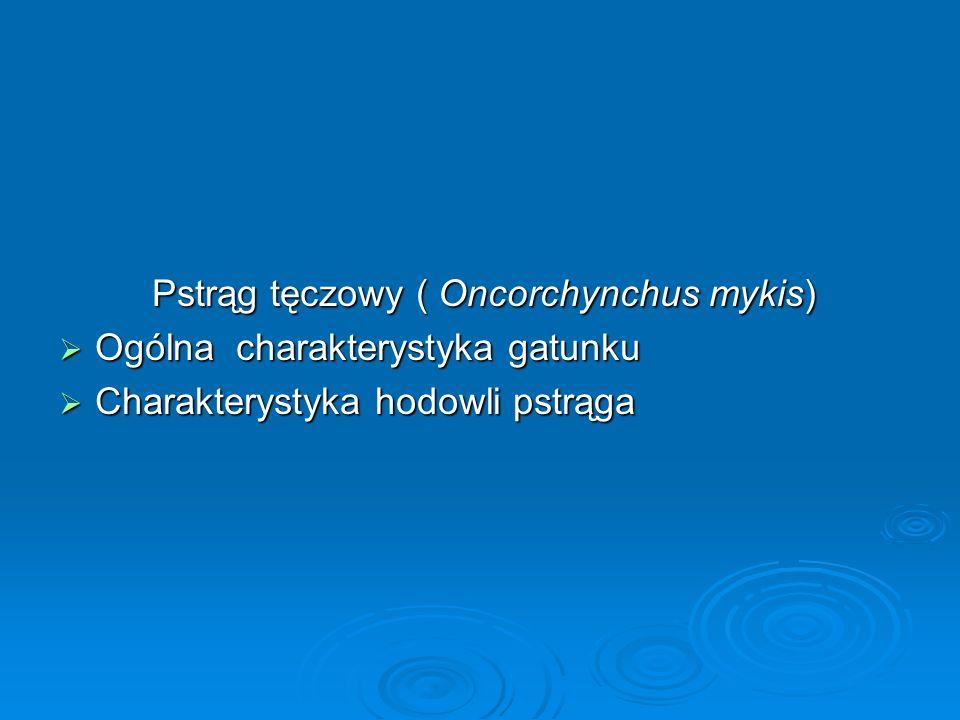 Pstrąg tęczowy ( Oncorchynchus mykis) Pstrąg tęczowy ( Oncorchynchus mykis) Ogólna charakterystyka gatunku Ogólna charakterystyka gatunku Charakteryst