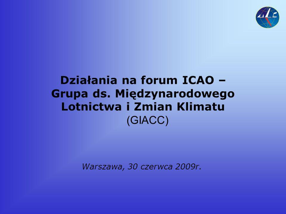 Działania na forum ICAO – Grupa ds.